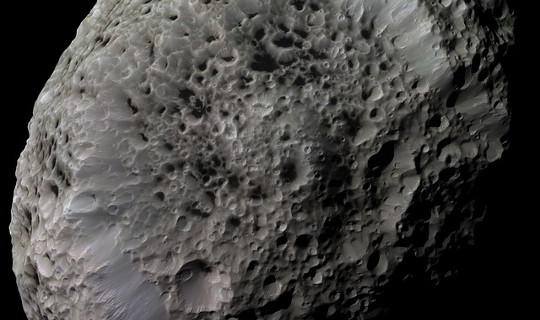 Asteroid or Comet or Sponge
